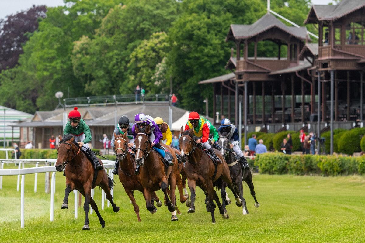"""Volle Felder vor leerer Tribüne: 81 Pferde laufen in neun Prüfungen. Dieses Rennen heißt """"Mach dich vom Acker"""". Gemeint ist das Coronavirus. Die Veranstalter nehmen die Pandemie mit Humor und trotzdem ernst. Nur in den Wettbewerben kommen sich Reiter und Pferde dann doch näher als anderthalb Meter."""