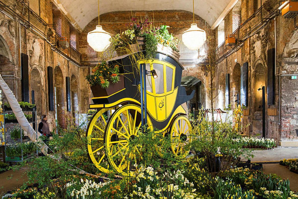 Der Dresdner Frühling im Cosel-Palais bringt frische Farbe ins junge Jahr.