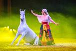 Europas größte Pferdshow ist wieder da