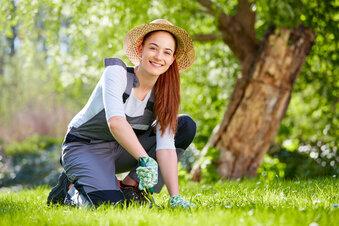 21 Fragen & Antworten zum Thema Garten