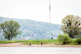 Dresdens Politiker bremsen Fernsehturm aus