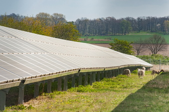 Landwirt fordert Augenmaß bei Solarparks