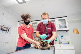 Tierklinik Stolpen unter den Top Ten
