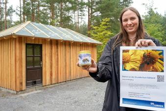 Honigverkauf an der Frühlingsbergschule