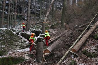 Verzichts-Appell verärgert Wanderer im Elbsandstein