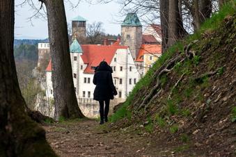 Wieder freie Sicht auf Hohnstein