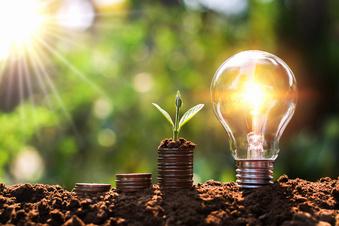 Stromsparen im Garten - gewusst wie