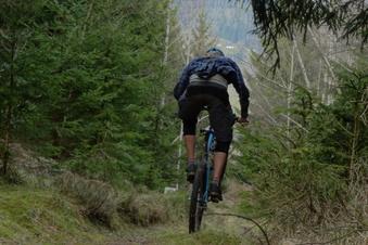 Hohe Strafe fürs Mountainbiken im Wald