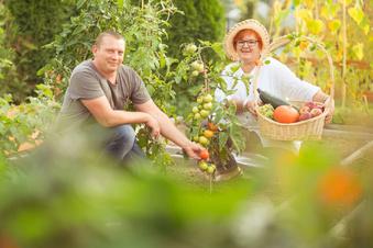 Vier Dinge, die Sie jetzt noch im Garten tun sollten
