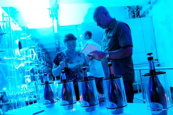 Gesetz gefährdet DDR-Erbe des sächsischen Weins