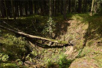 750 Jahre alte Bergbausiedlung entdeckt