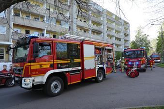 Dresdner Feuerwehr rettet Wellensittich