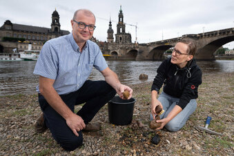 Die Schätze aus der Elbe