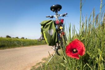 Ungarischer Radfahrer auf Odyssee durch Europa