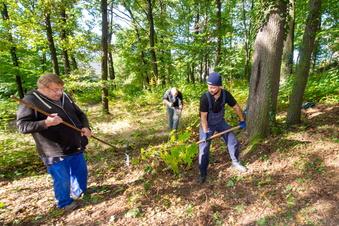Kurpark Friedewald wird wieder hübsch gemacht