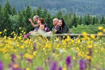 Osterzgebirge: Schlemmen und Blüten gucken