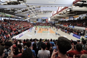 Volleyball-Supercup in Dresden mit Fans