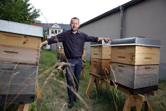 Der Herr der Bienen