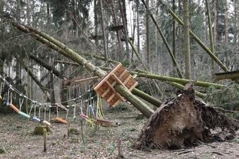 Sturm zerstört Waldseilpark an der Malter