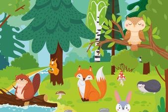 Was ist was im Wald? Suchen & gewinnen!