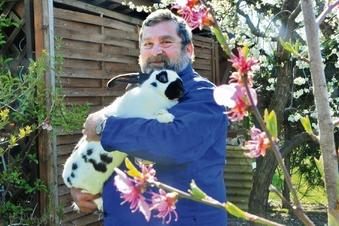 Was macht ein Kaninchen zu Ostern?
