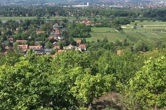 Route 9: Von Schönfeld nach Malschendorf
