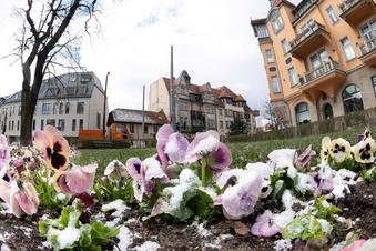 """""""Schauriges Wetter"""" in Dresden"""