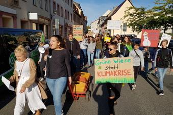 Klimademo ohne Streik
