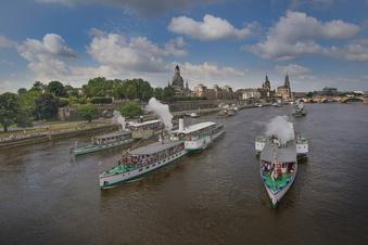 Erste Dresdner Dampferparade seit Corona