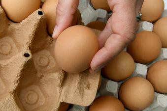 Feuerwehr Dresden mit Eiern beworfen