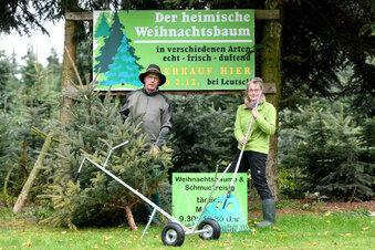 Euldorfs neue Weihnachtsbaum-Experten