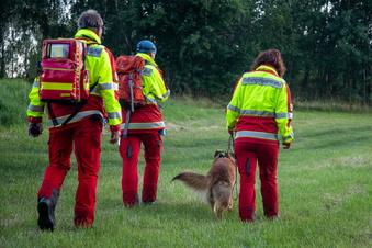 Rettungshund findet vermisste Frau im Wald
