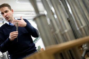 Holzwurm frisst Frauenkirch-Orgel an
