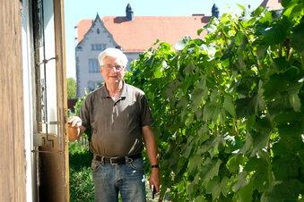 Sachsens älteste Weinbaugemeinschaft