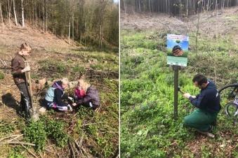 Feuerwehr hilft: 250 Bäume fürs Neißetal