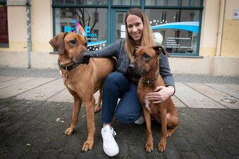 Von der Altenpflegerin zur Hunde-Expertin