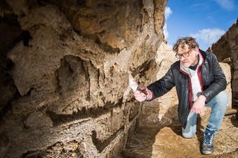Was Archäologen im Zwingerhof entdeckt haben