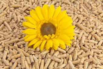 Pellets als Alternative zu Heizöl