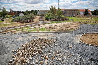 Bürgergarten wird bis November bepflanzt