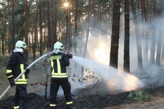 Lagerfeuerbrand flammt ein zweites Mal auf
