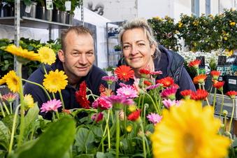 Saison-Start beim Holland-Pflanzenmarkt