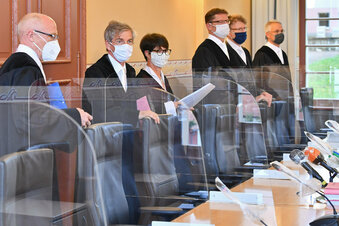 AfD klagt erfolgreich gegen Paritätsgesetz