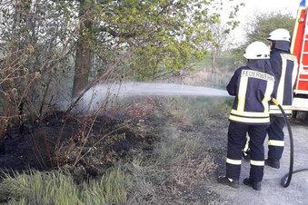 Fußgänger stoppen Brand im Nonnenwald
