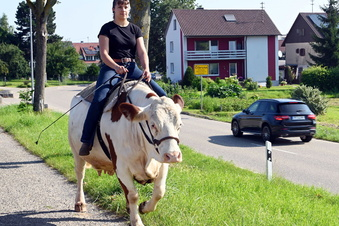 Hoch zu Kuh durchs ganze Dorf