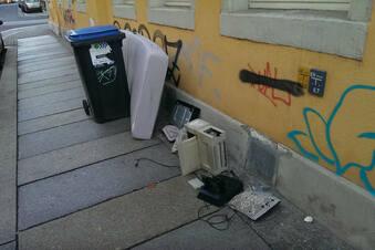 Dresdner entsorgen ihren Müll illegal