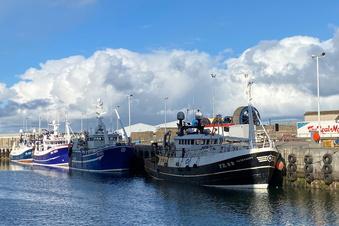 Brexit: Schottlands Fischer sind sauer