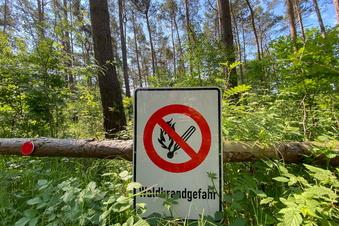 Höchste Waldbrandgefahr in Nord-Sachsen