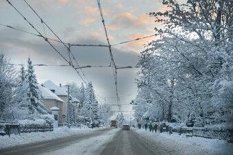 Dresdens Hoffnung auf weiße Weihnacht