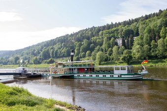 Dampfer steuern die Sächsische Schweiz an