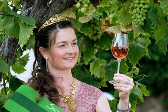 Die neue Königin der Weinberge